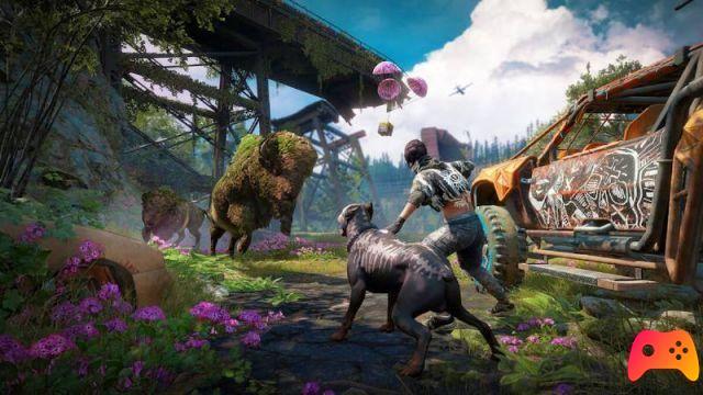 Far Cry 4 Dmg